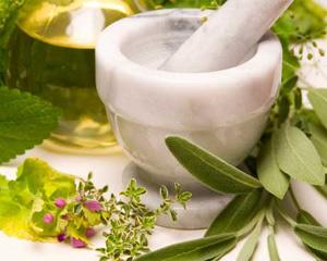 Pengobatan Herbal, Kabarsehat.com